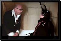 Harry Hill's Little Internet Show. 5: Ant Surprise