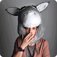 War Donkey ★★★★