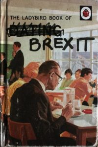 Christie's Ladybird Book of Brexit, featured in her show. Photograph: Martin Godwin for the Guardian